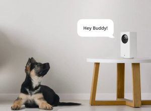 Best Home Security Camera System Reviews and Buying Guide 2020