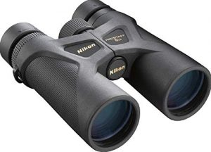 Best Binoculars for Bird Watching Beginners